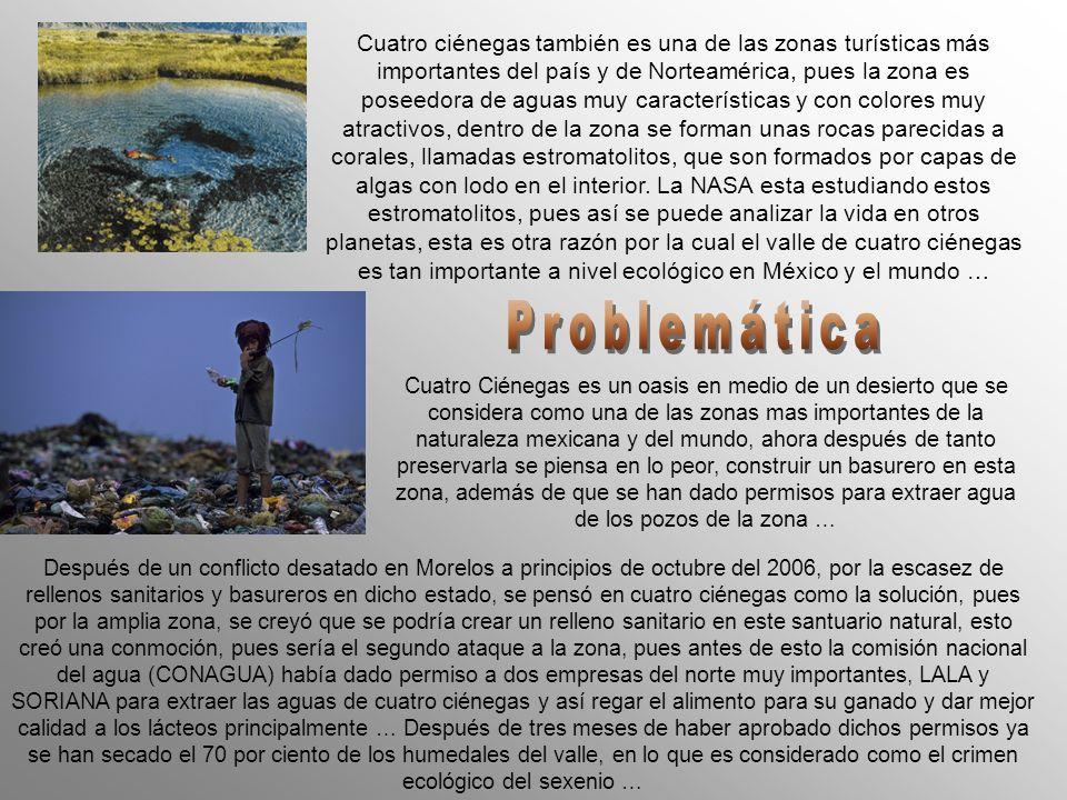 Cuatro ciénegas también es una de las zonas turísticas más importantes del país y de Norteamérica, pues la zona es poseedora de aguas muy características y con colores muy atractivos, dentro de la zona se forman unas rocas parecidas a corales, llamadas estromatolitos, que son formados por capas de algas con lodo en el interior. La NASA esta estudiando estos estromatolitos, pues así se puede analizar la vida en otros planetas, esta es otra razón por la cual el valle de cuatro ciénegas es tan importante a nivel ecológico en México y el mundo …