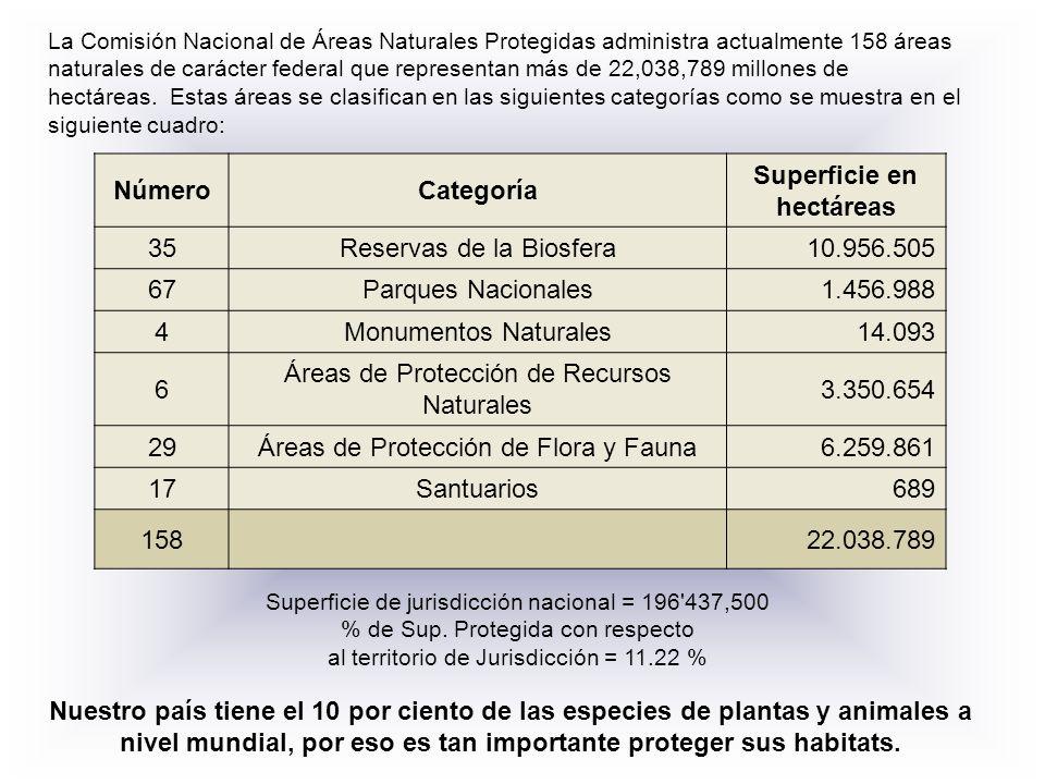 Superficie en hectáreas
