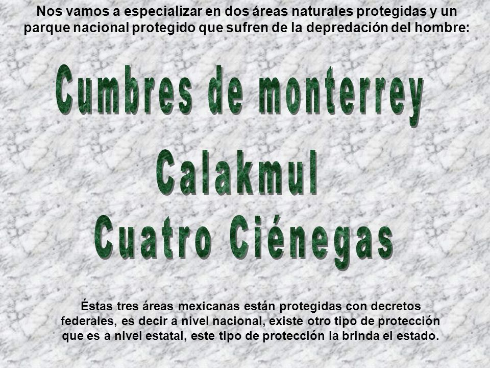 Cumbres de monterrey Calakmul Cuatro Ciénegas