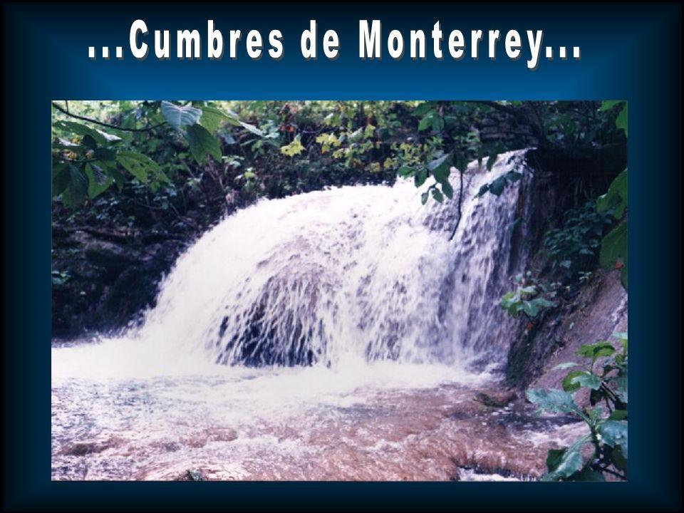 ...Cumbres de Monterrey...