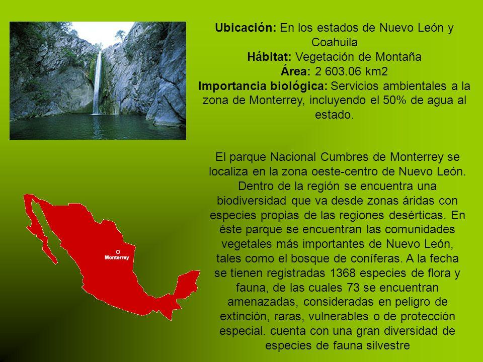 Ubicación: En los estados de Nuevo León y Coahuila