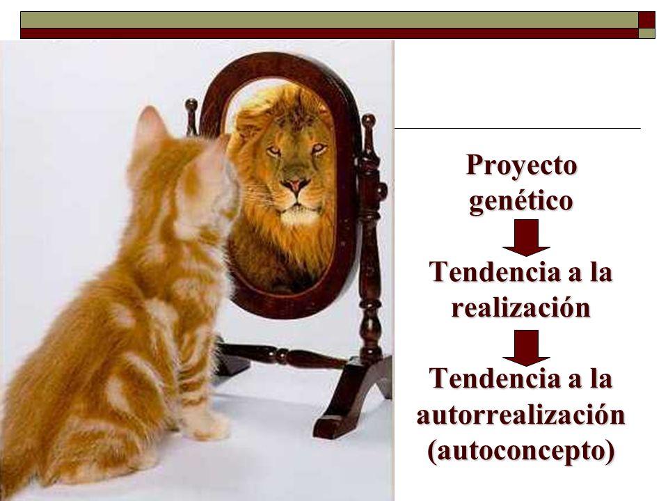 Proyecto genético Tendencia a la realización Tendencia a la autorrealización (autoconcepto)