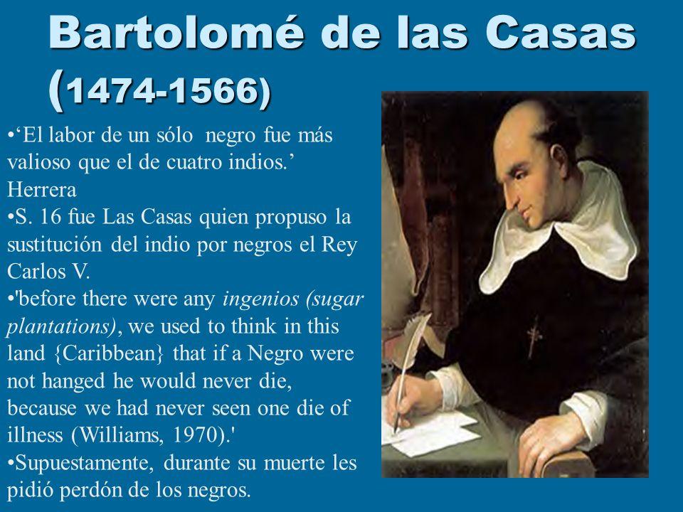 Bartolomé de las Casas (1474-1566)