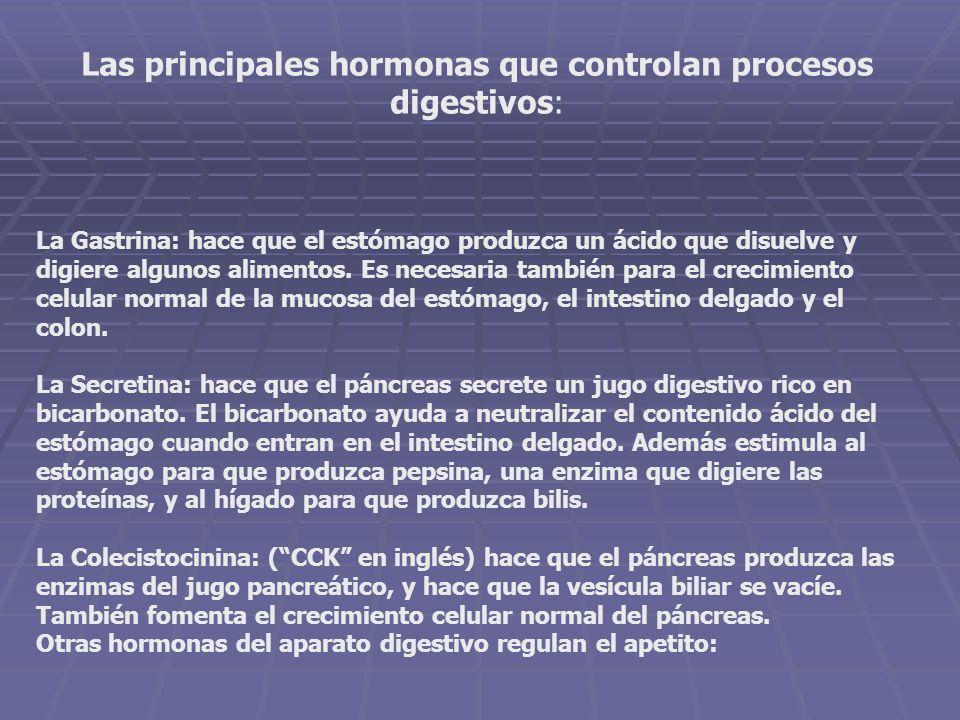 Las principales hormonas que controlan procesos digestivos: