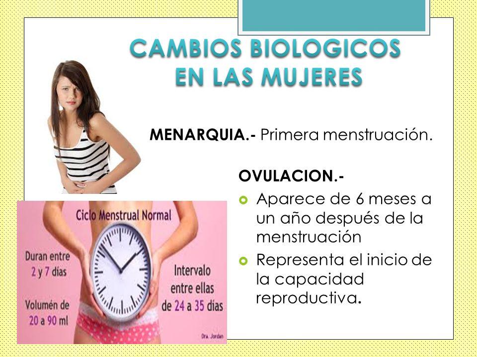 CAMBIOS BIOLOGICOS EN LAS MUJERES