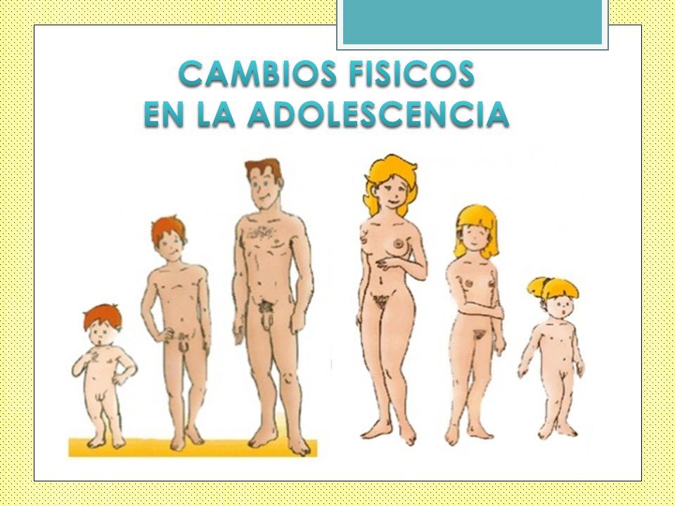 CAMBIOS FISICOS EN LA ADOLESCENCIA