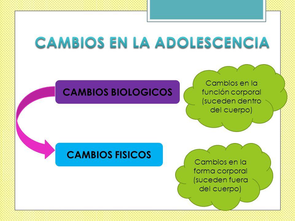CAMBIOS EN LA ADOLESCENCIA