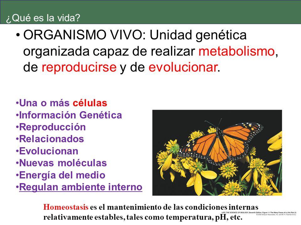 ¿Qué es la vida ORGANISMO VIVO: Unidad genética organizada capaz de realizar metabolismo, de reproducirse y de evolucionar.