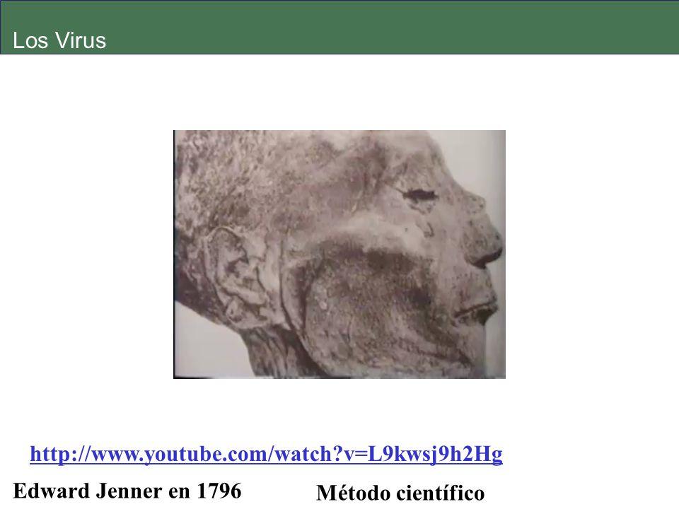 Los Virus http://www.youtube.com/watch v=L9kwsj9h2Hg Edward Jenner en 1796 Método científico