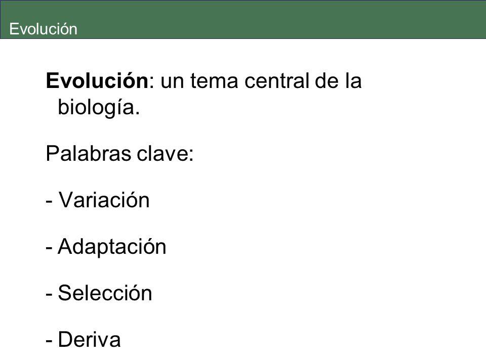 Evolución: un tema central de la biología. Palabras clave: - Variación