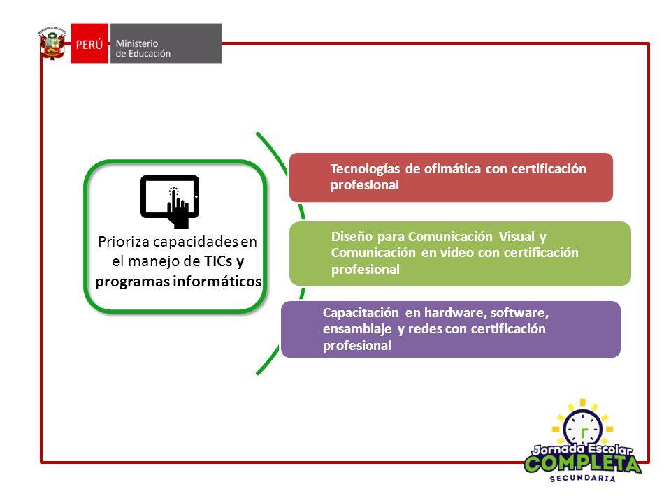 Prioriza capacidades en el manejo de TICs y programas informáticos
