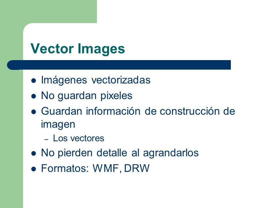 Vector Images Imágenes vectorizadas No guardan pixeles