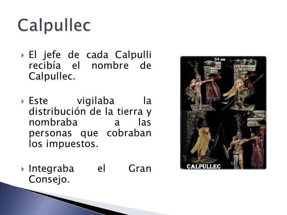 Calpullec El jefe de cada Calpulli recibía el nombre de Calpullec.