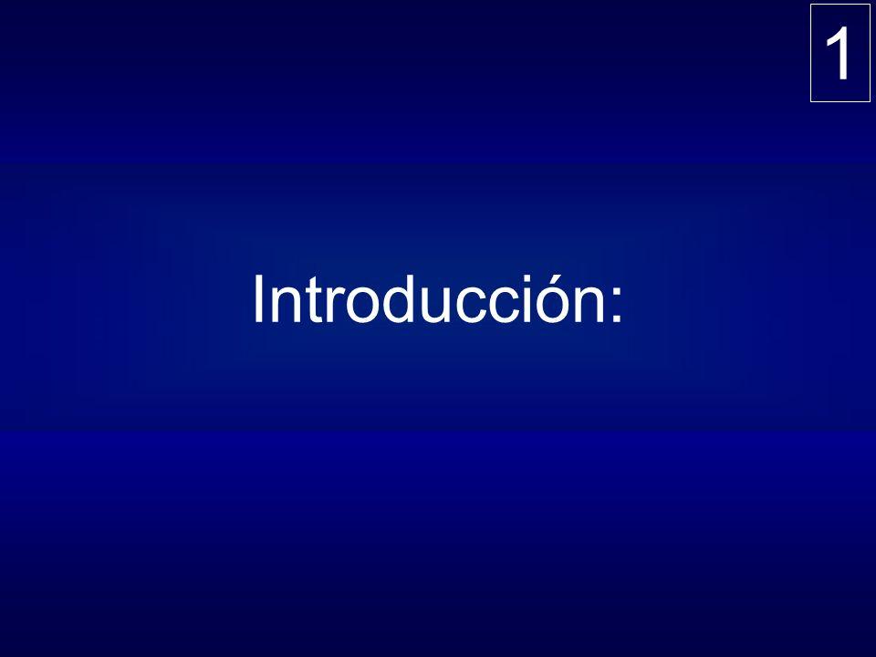 1 Introducción: