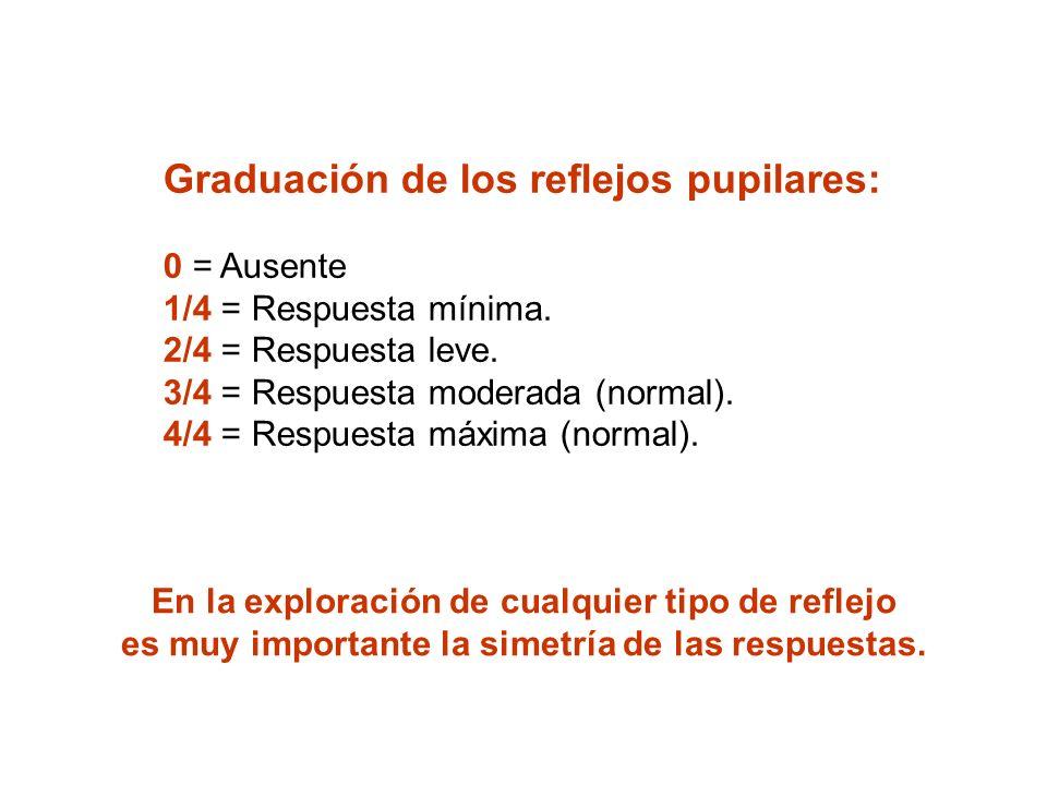Graduación de los reflejos pupilares: 0 = Ausente 1/4 = Respuesta mínima. 2/4 = Respuesta leve. 3/4 = Respuesta moderada (normal). 4/4 = Respuesta máxima (normal).