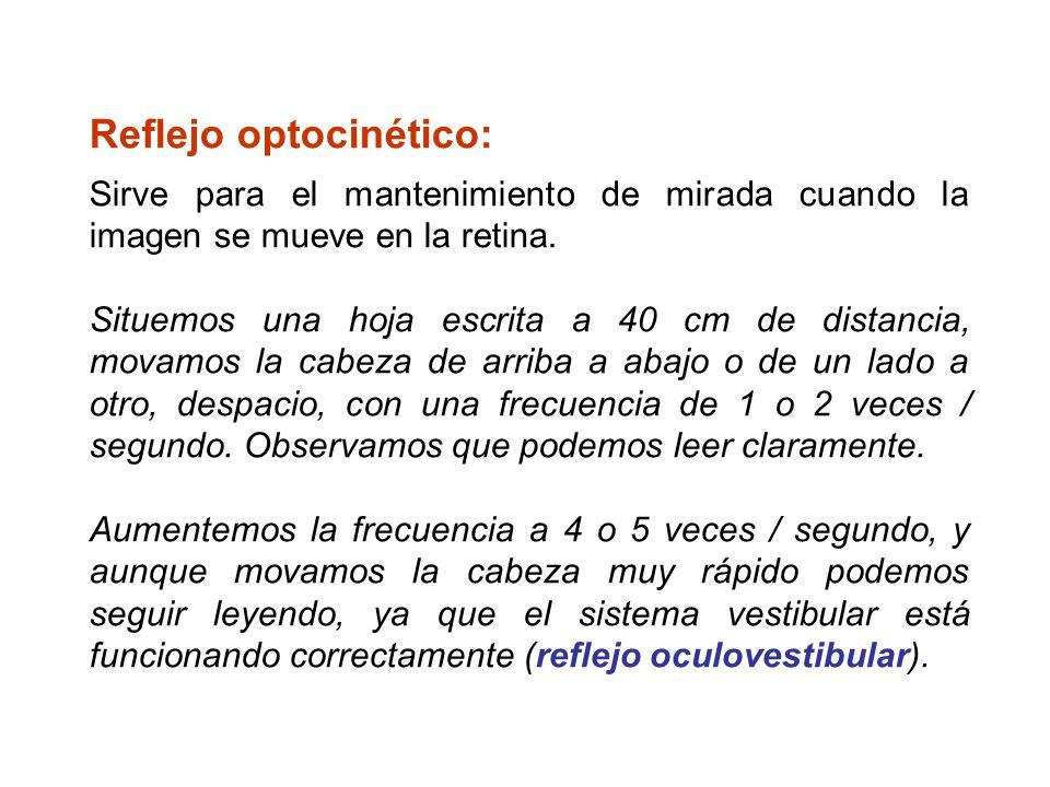 Reflejo optocinético: