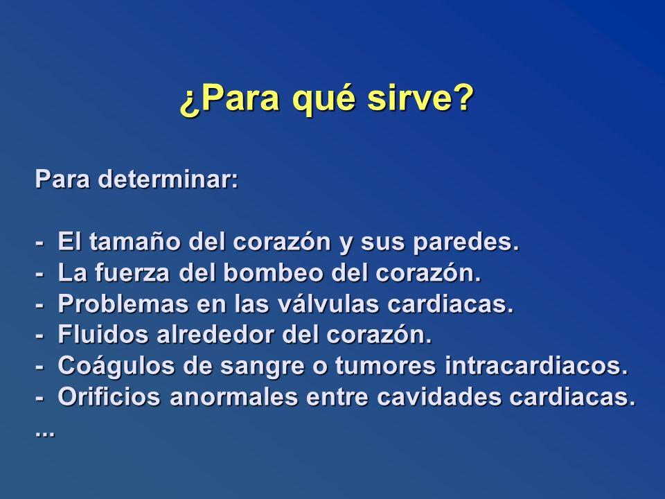 ¿Para qué sirve. Para determinar: - El tamaño del corazón y sus paredes.