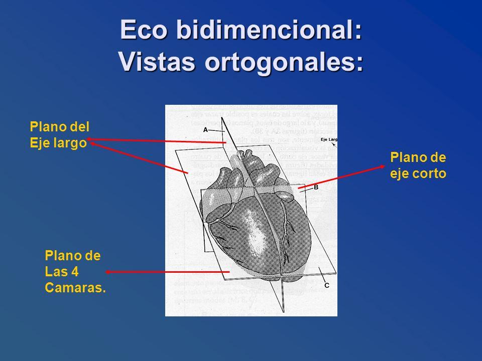 Eco bidimencional: Vistas ortogonales: