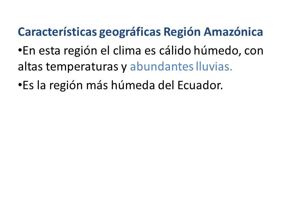 Características geográficas Región Amazónica