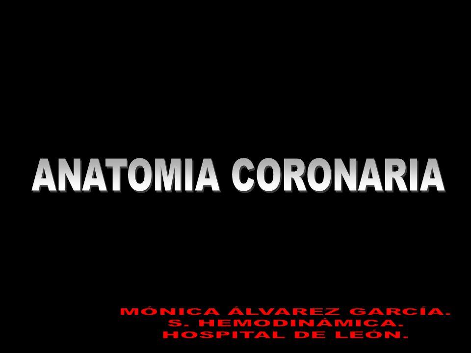 ANATOMIA CORONARIA MÓNICA ÁLVAREZ GARCÍA. S. HEMODINÁMICA.