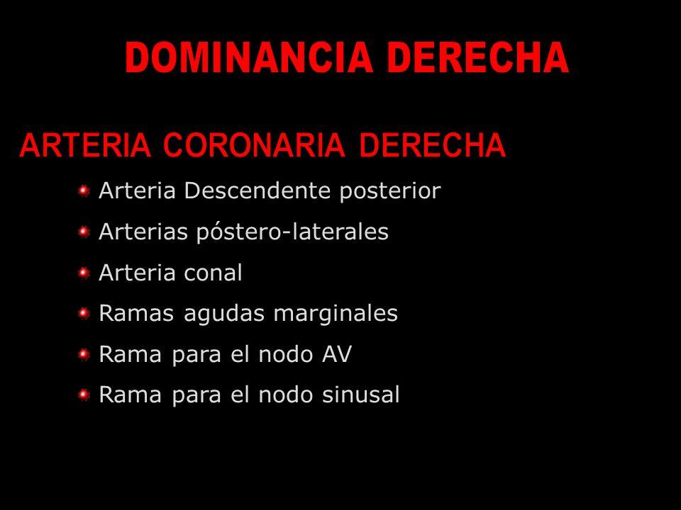 ARTERIA CORONARIA DERECHA