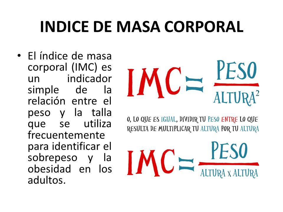 INDICE DE MASA CORPORAL