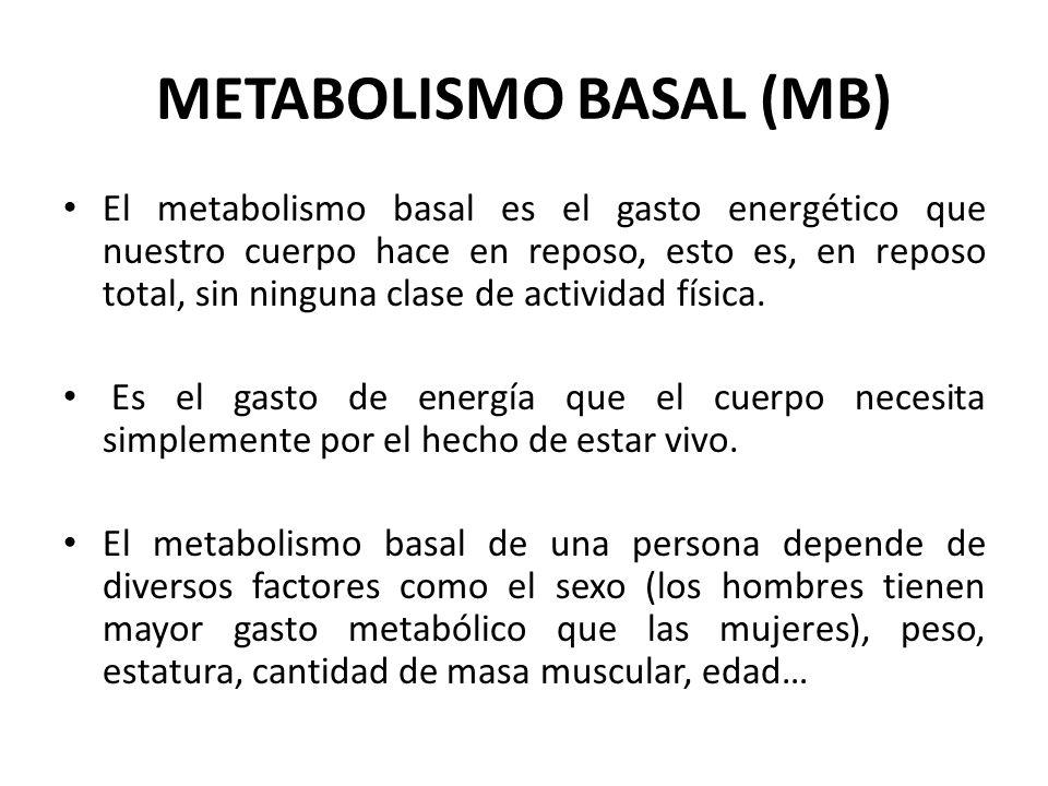 METABOLISMO BASAL (MB)