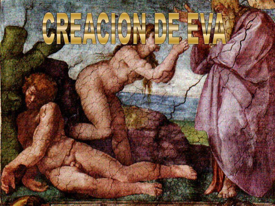 CREACION DE EVA