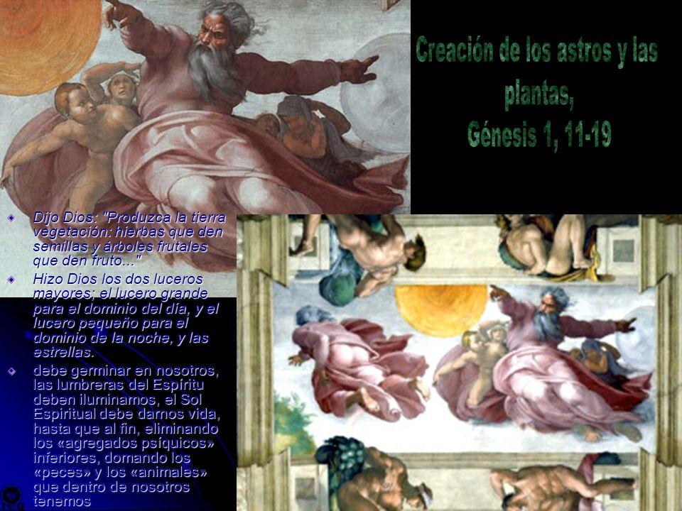 Creación de los astros y las