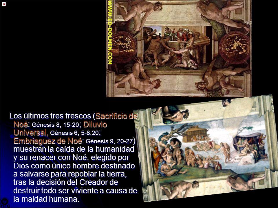 Los últimos tres frescos (Sacrificio de Noé: Génesis 8, 15-20; Diluvio Universal, Génesis 6, 5-8,20; Embriaguez de Noé: Génesis 9, 20-27) muestran la caída de la humanidad y su renacer con Noé, elegido por Dios como único hombre destinado a salvarse para repoblar la tierra, tras la decisión del Creador de destruir todo ser viviente a causa de la maldad humana.