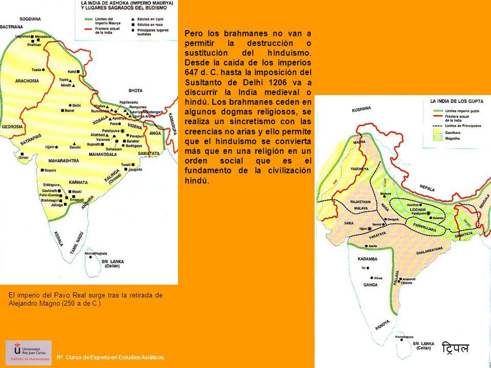 Pero los brahmanes no van a permitir la destrucción o sustitución del hinduismo. Desde la caída de los imperios 647 d. C. hasta la imposición del Susltanto de Delhi 1206 va a discurrir la India medieval o hindú. Los brahmanes ceden en algunos dogmas religiosos, se realiza un sincretismo con las creencias no arias y ello permite que el hinduismo se convierta más que en una religión en un orden social que es el fundamento de la civilización hindú.