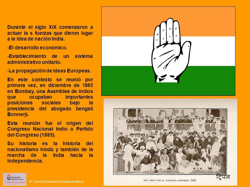 Durante el siglo XIX comenzaron a actuar la s fuerzas que dieron lugar a la idea de nación India.