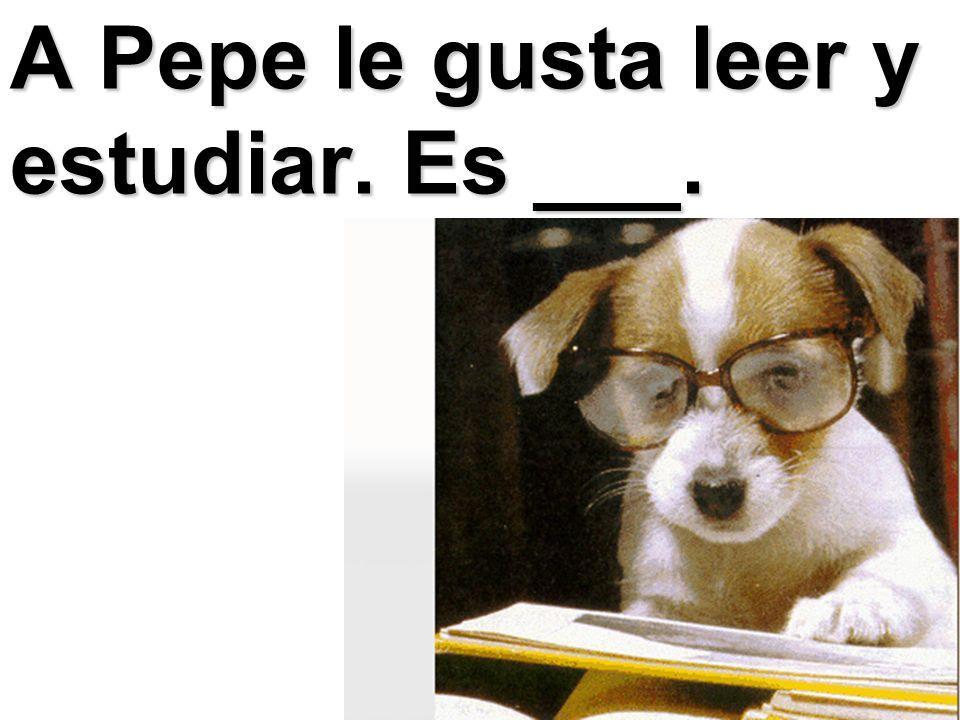 A Pepe le gusta leer y estudiar. Es ___.