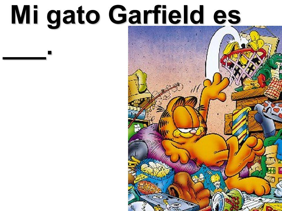 Mi gato Garfield es ___.