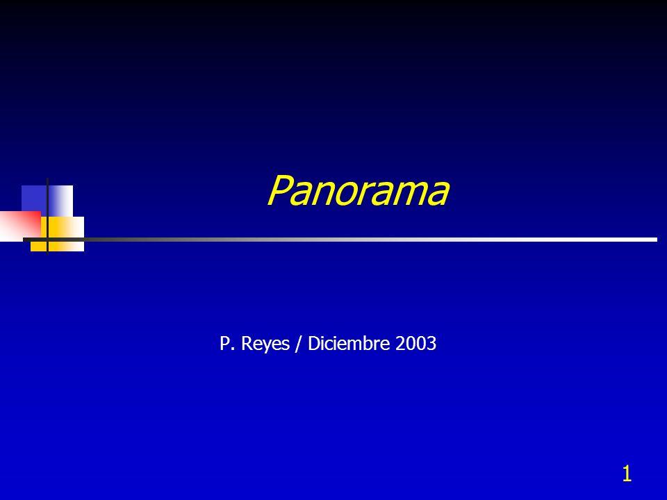 Panorama P. Reyes / Diciembre 2003