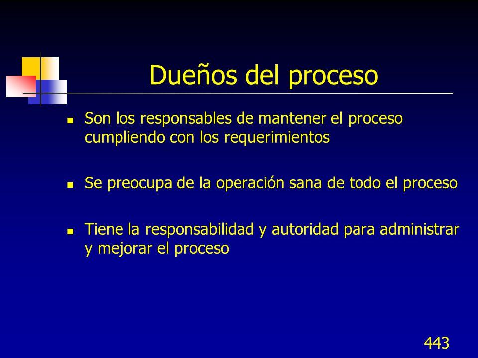 Dueños del proceso Son los responsables de mantener el proceso cumpliendo con los requerimientos.