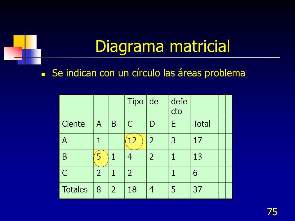 Diagrama matricial Se indican con un círculo las áreas problema Tipo