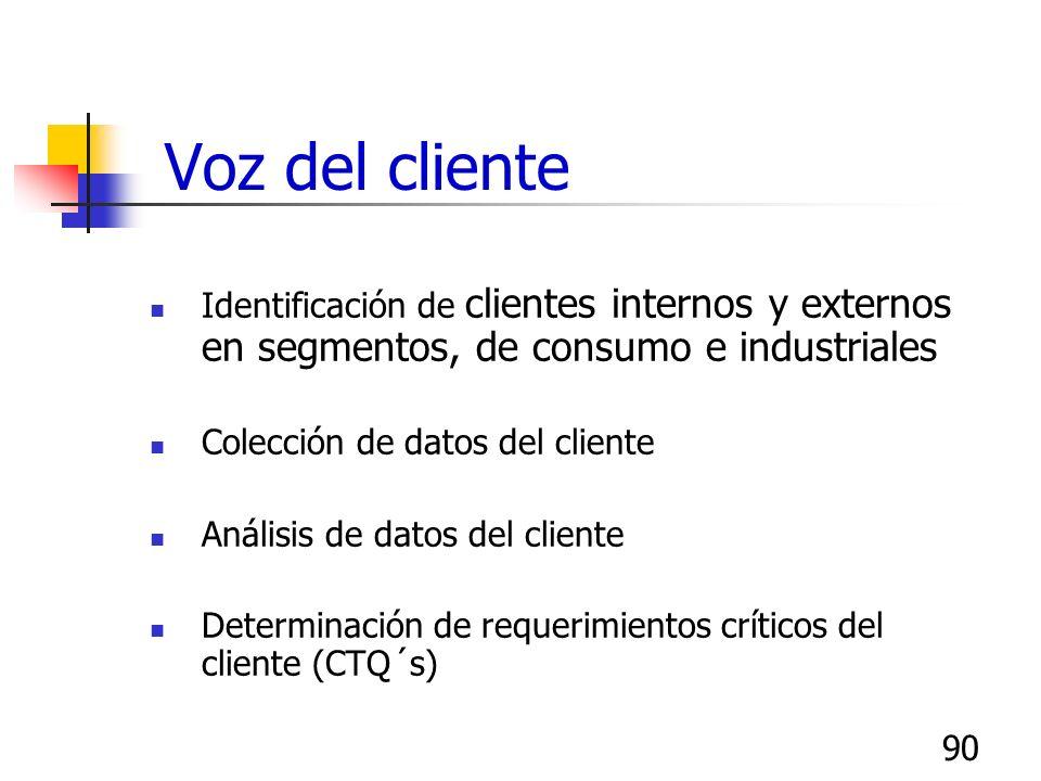 Voz del clienteIdentificación de clientes internos y externos en segmentos, de consumo e industriales.