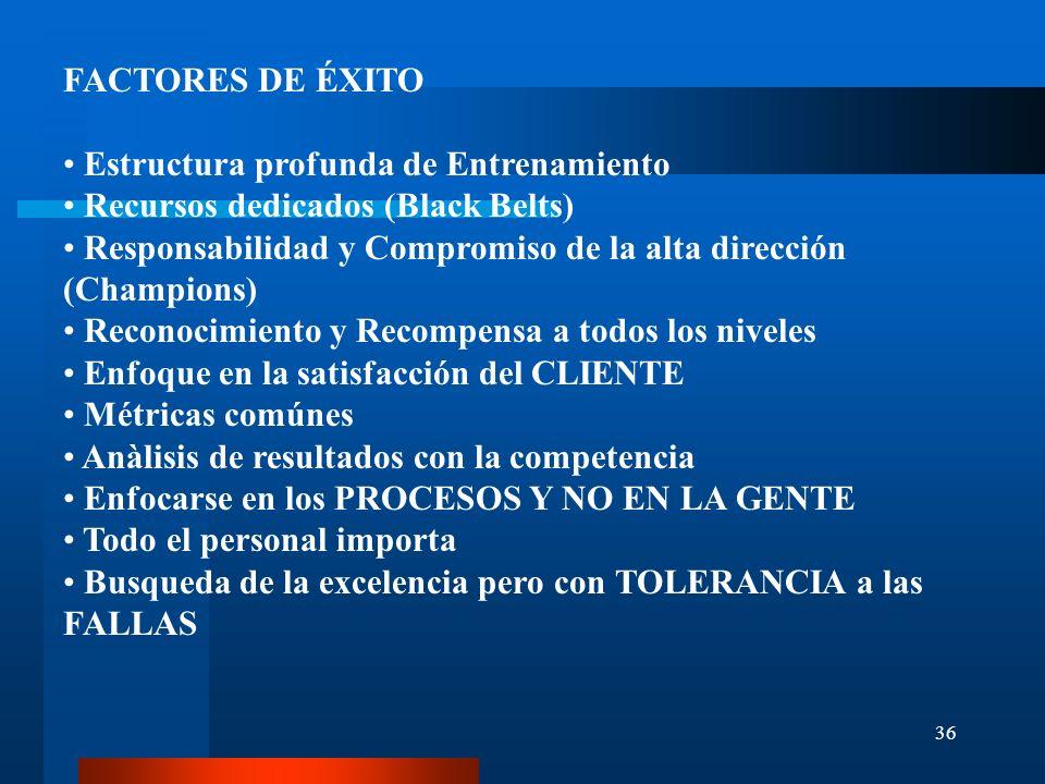 FACTORES DE ÉXITO Estructura profunda de Entrenamiento. Recursos dedicados (Black Belts)