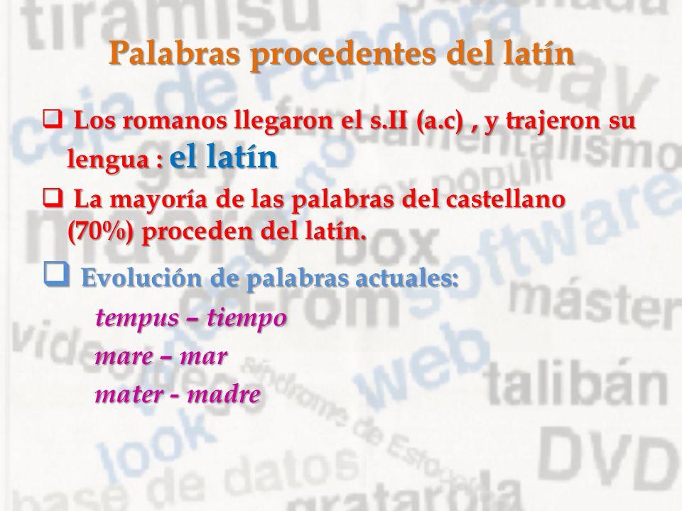Palabras Procedentes Del Latin 43