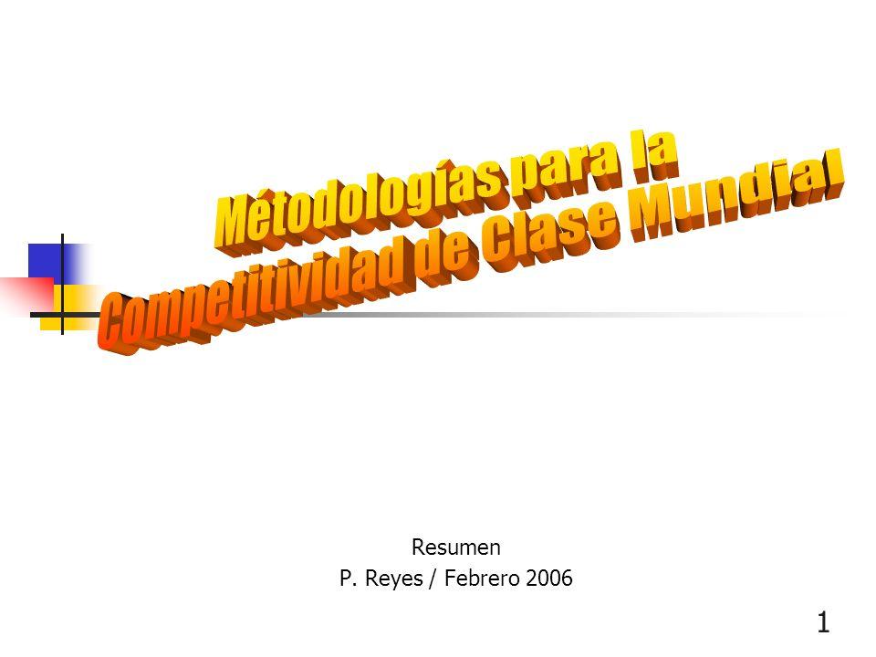Resumen P. Reyes / Febrero 2006