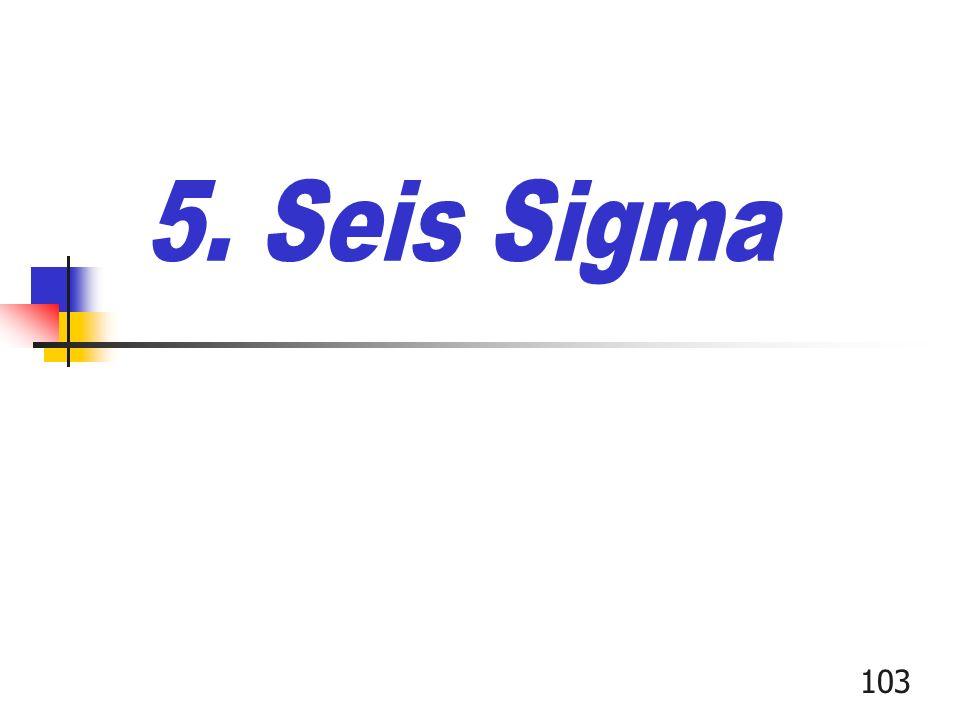 5. Seis Sigma