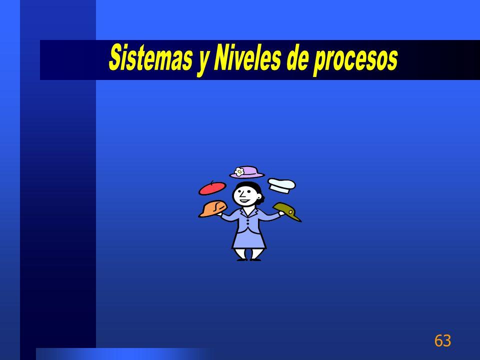 Sistemas y Niveles de procesos