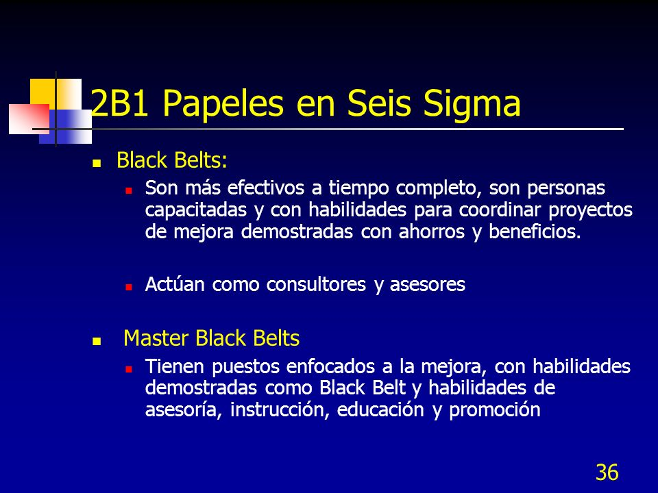 2B1 Papeles en Seis Sigma Black Belts: Master Black Belts