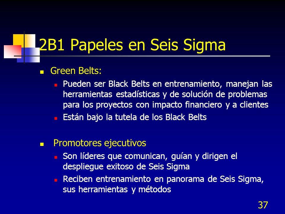 2B1 Papeles en Seis Sigma Green Belts: Promotores ejecutivos