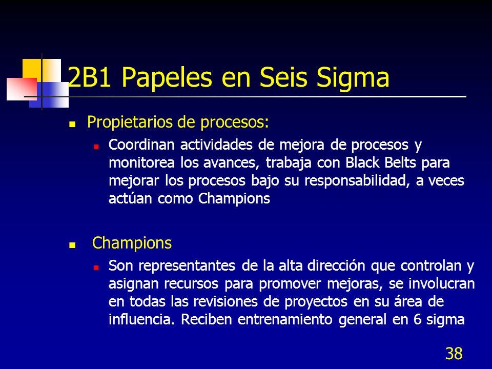 2B1 Papeles en Seis Sigma Propietarios de procesos: Champions
