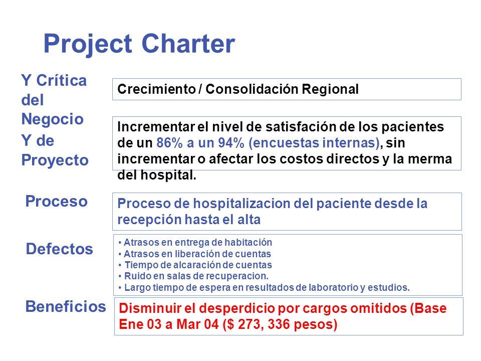 Project Charter Y Crítica del Negocio Y de Proyecto Proceso Defectos