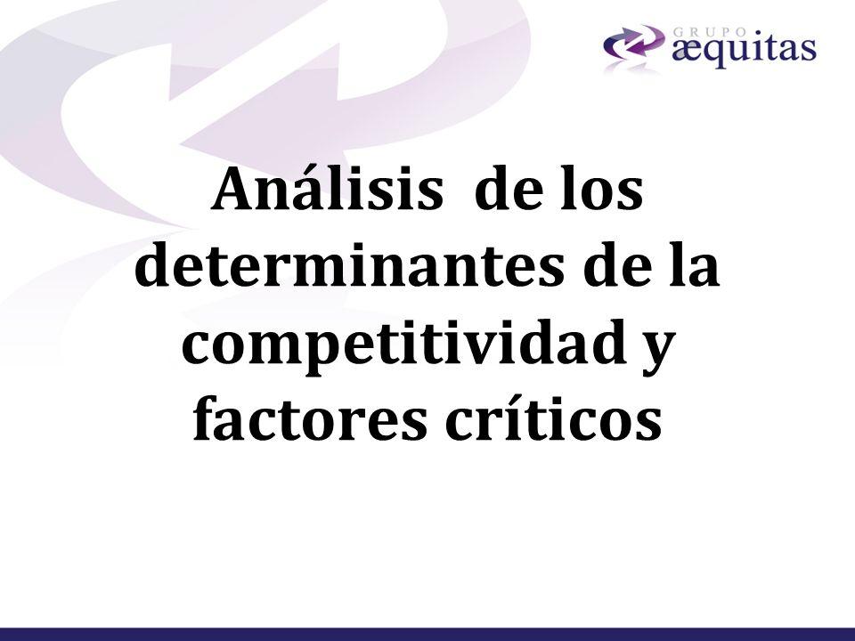 Análisis de los determinantes de la competitividad y factores críticos