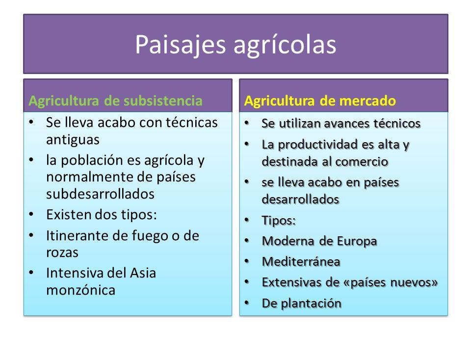 Paisajes agrícolas Agricultura de subsistencia Agricultura de mercado