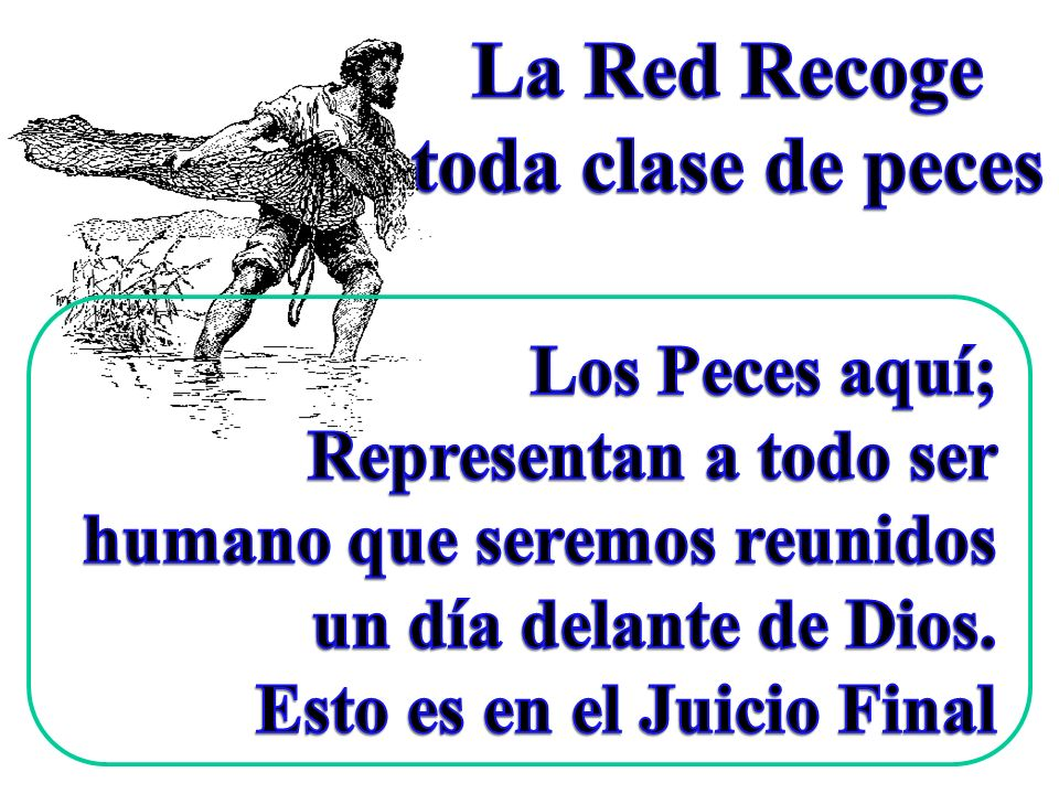 La Red Recoge toda clase de peces